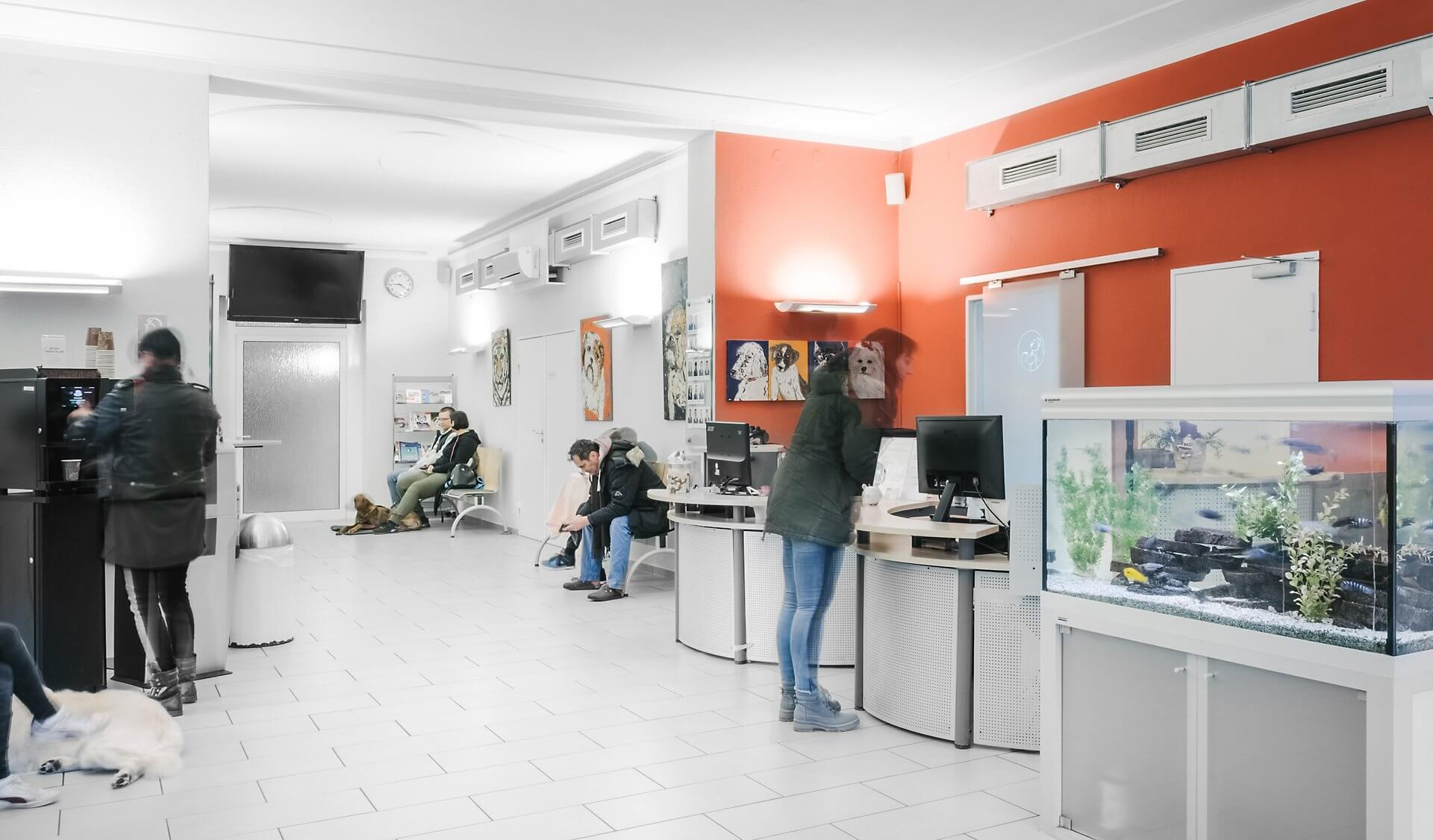 Tierarztpraxis Dr. Sörensen GmbH in Berlin